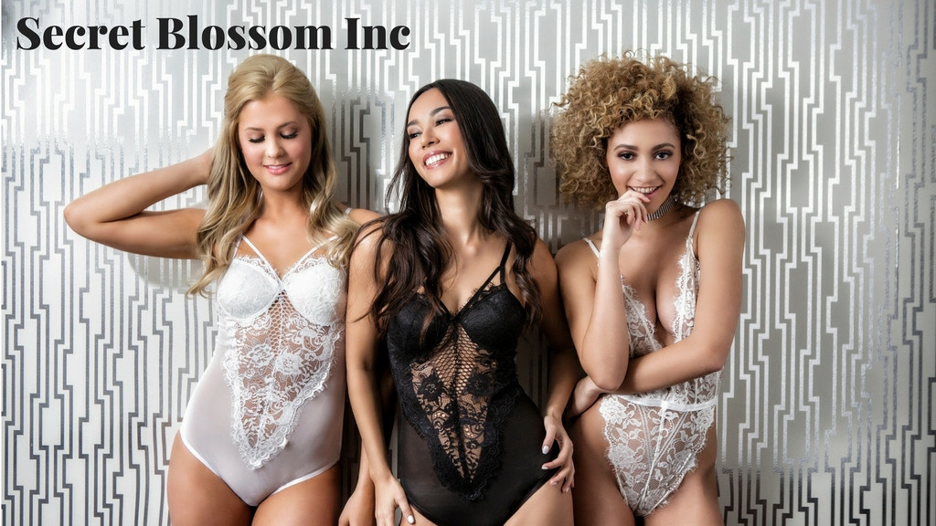 Redefining Lingerie Shopping - Secret Blossom Inc project video thumbnail