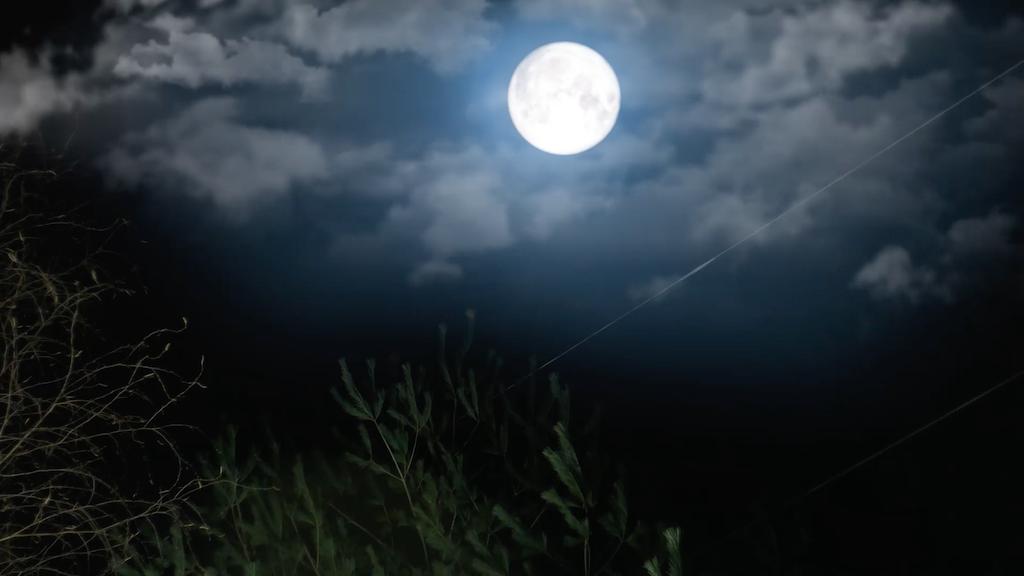Grandma Werewolf - Feature Film project video thumbnail
