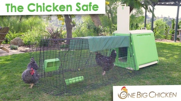 The Chicken Safe - Backyard Chickens Made Easy