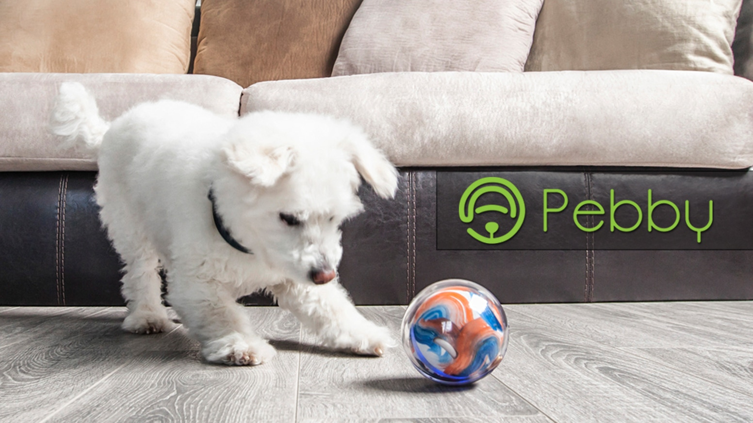 Pebby makes sure your pets are never alone at home. Track, monitor, and play with your pet from anywhere in the world.
