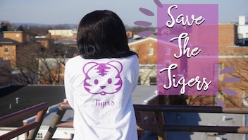 Tigris Clothing Co: Color Changing Shirts to Save the Tigers