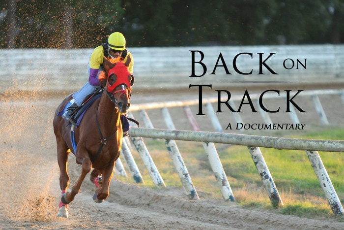 What happens to Thoroughbred racehorses once their racing careers have ended?