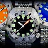 Irreantum Watch