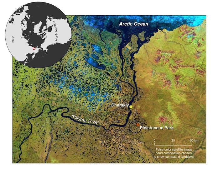 Location of the Pleistocene Park