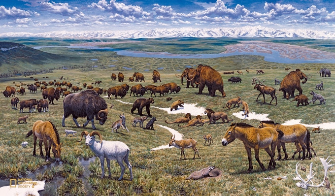 An artists rendering of what the mammoth steppe looked like