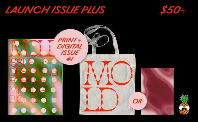 MOLD Magazine Issue #01 and your choice of Market Tote OR Tea Towel PLUS a limited edition pineapple pin.