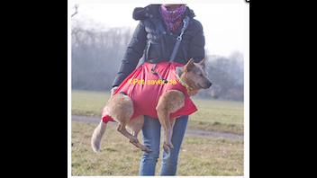 Pet-Saver Die Tierrettungstrage