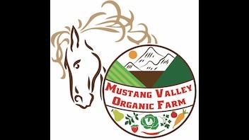 Mustang Valley Organic Farm