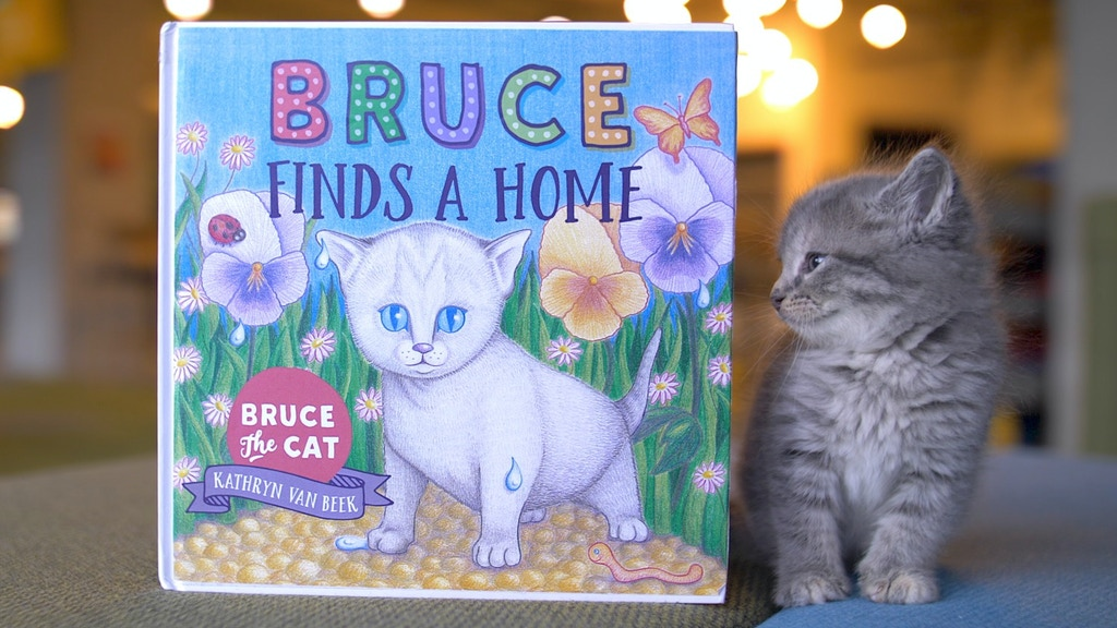 Bruce Finds A Home project video thumbnail