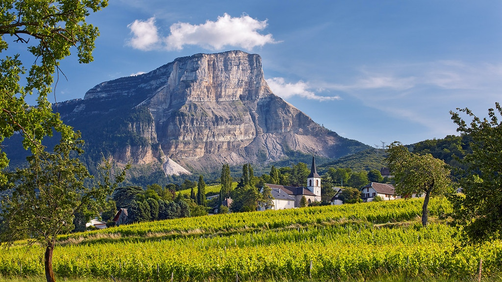 Wines of the French Alps: Savoie, Bugey and beyond project video thumbnail