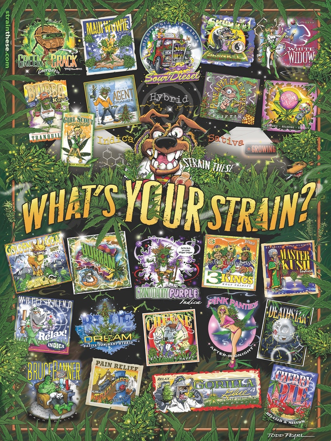 """""""What's Your Strain?""""_18 x 24 poster"""