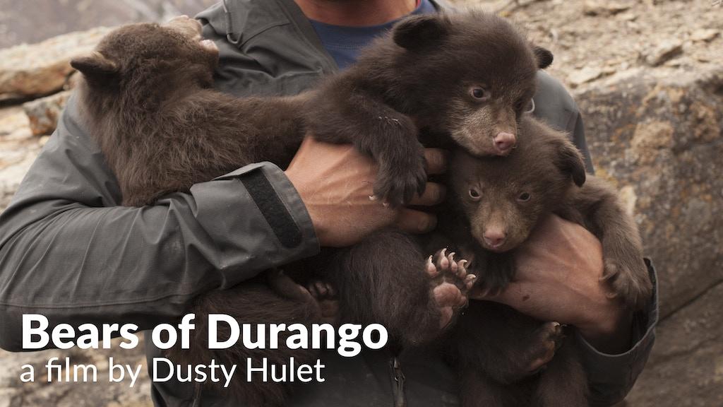 Bears of Durango - Documentary Film project video thumbnail