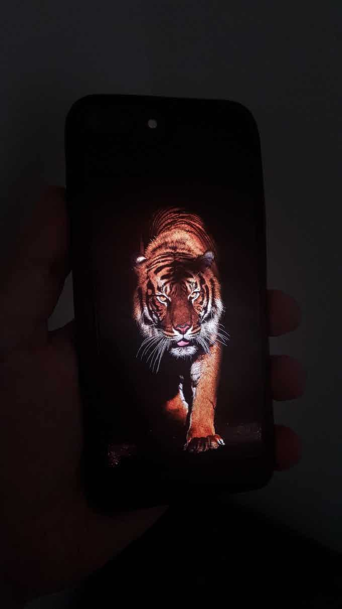 AMOLED screen showcasing real black (This picture of Eye was shot in the dark)