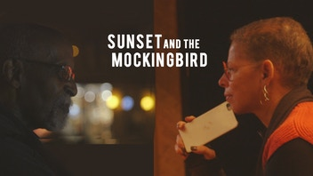 SUNSET AND THE MOCKINGBIRD