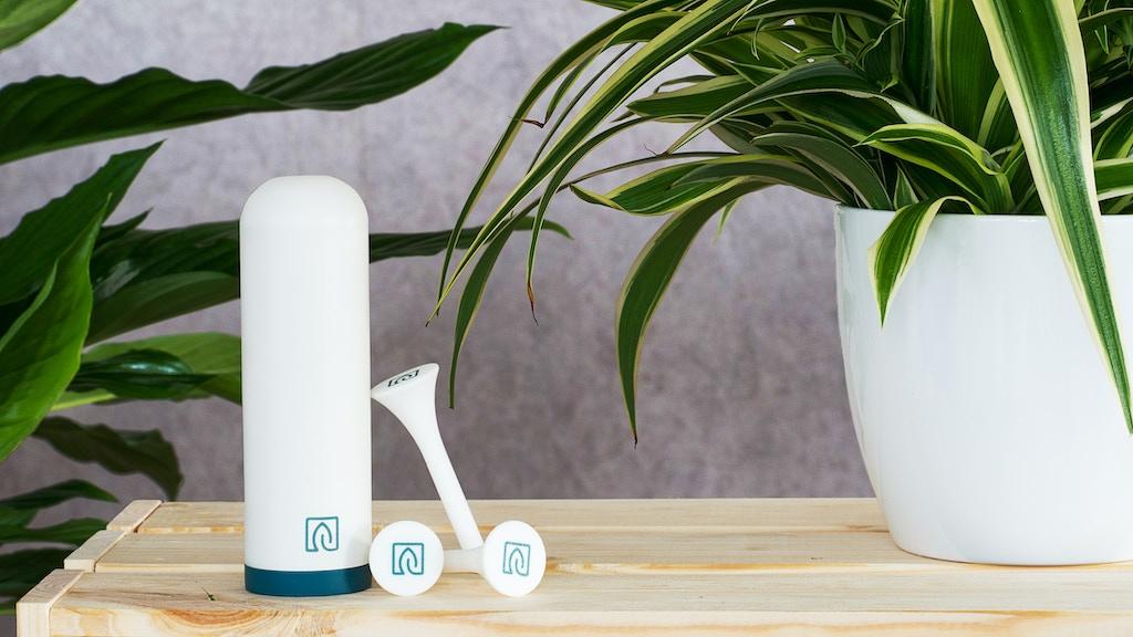 växt - der grüne Daumen für dein Zuhause project video thumbnail