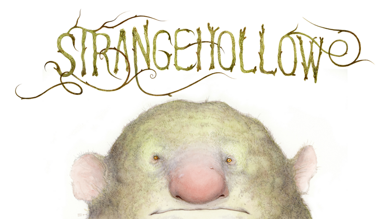 A fully illustrated art book filled with unusual creatures and extraordinary beings from a vast enchanted forest