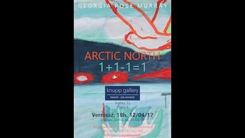 ARCTIC NORTH 1+1-1=1