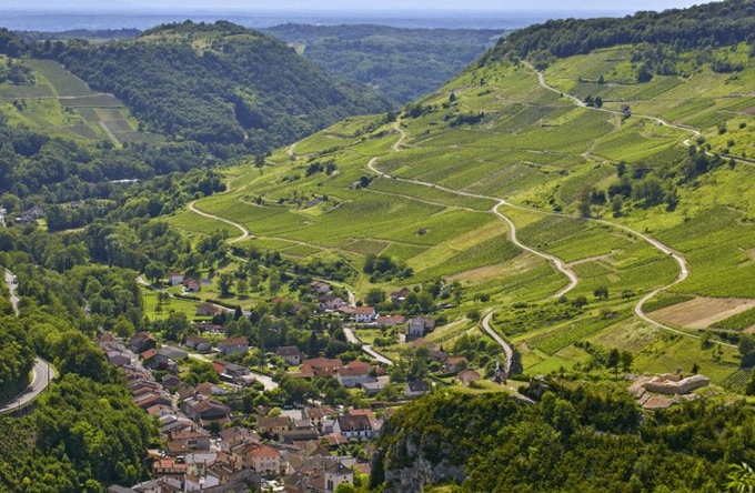 The vineyards of Cerdon in the Bugey, growing Gamay and Poulsard to make a delicate sparkling rosé. Photo by Mick Rock