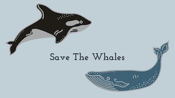 Save The Whales Enamel Pins / 1-Hit Wonder