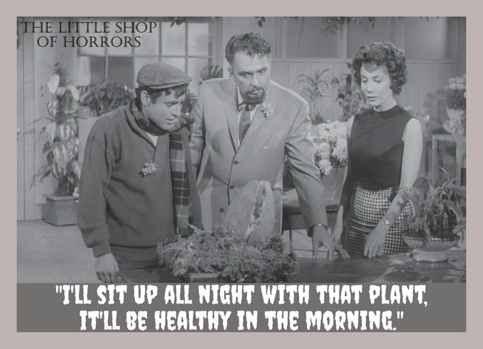 Image result for the plant in the original little shop of horrors