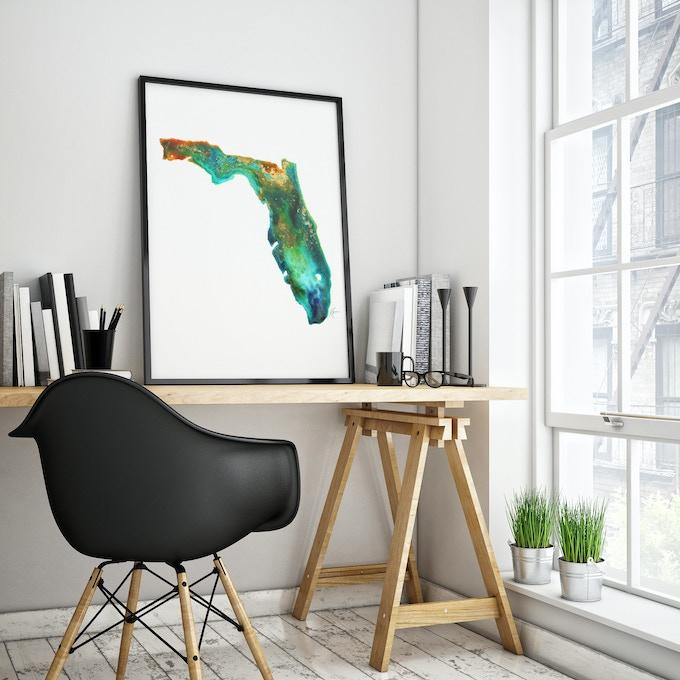 Framed 16x20 of Florida