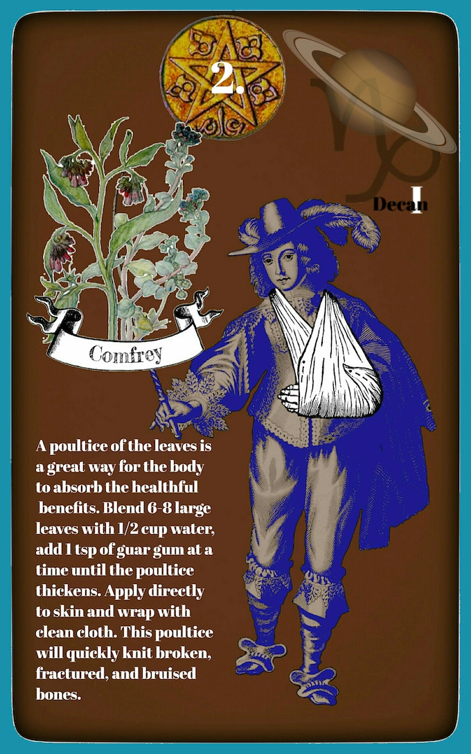 2 of coins Comfrey meanding the bones of Capricorn