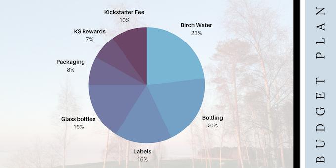 Our Kickstarter Budget Plan