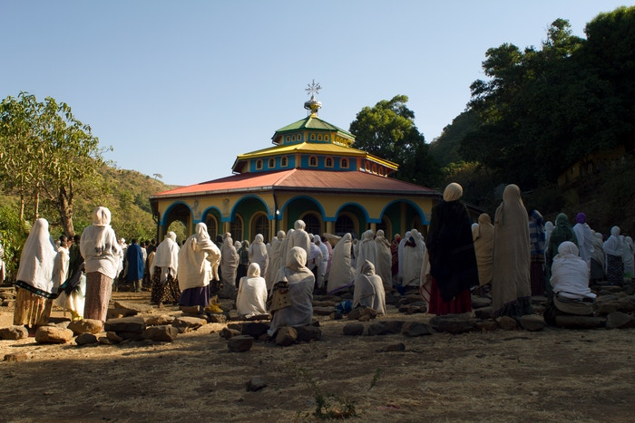 'Church Forest' is a documentary film exploring the disappearing church forests of Ethiopia and the work being done to save them.