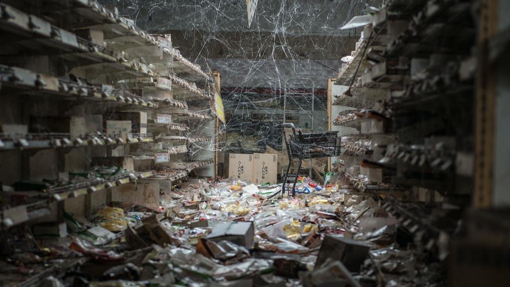 HALF-LIFE: from Chernobyl to Fukushima. project video thumbnail