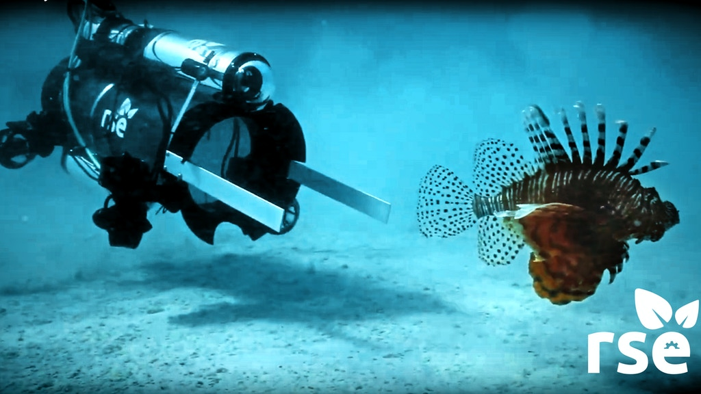 Worlds First Eco Robot Protecting Reefs from Lionfish project video thumbnail