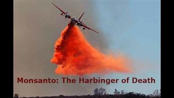 Monsanto: The Harbinger of Death