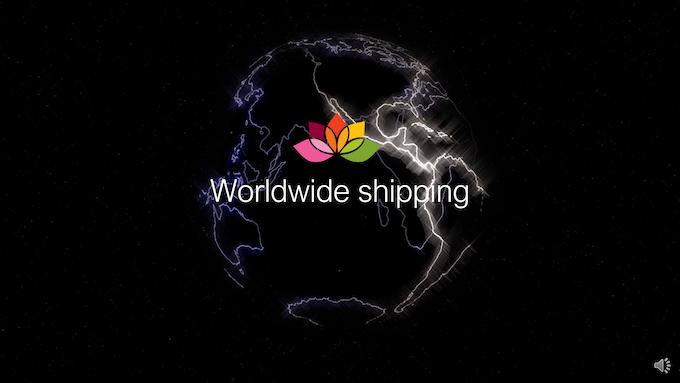 Ledunia will be shipped worldwide!