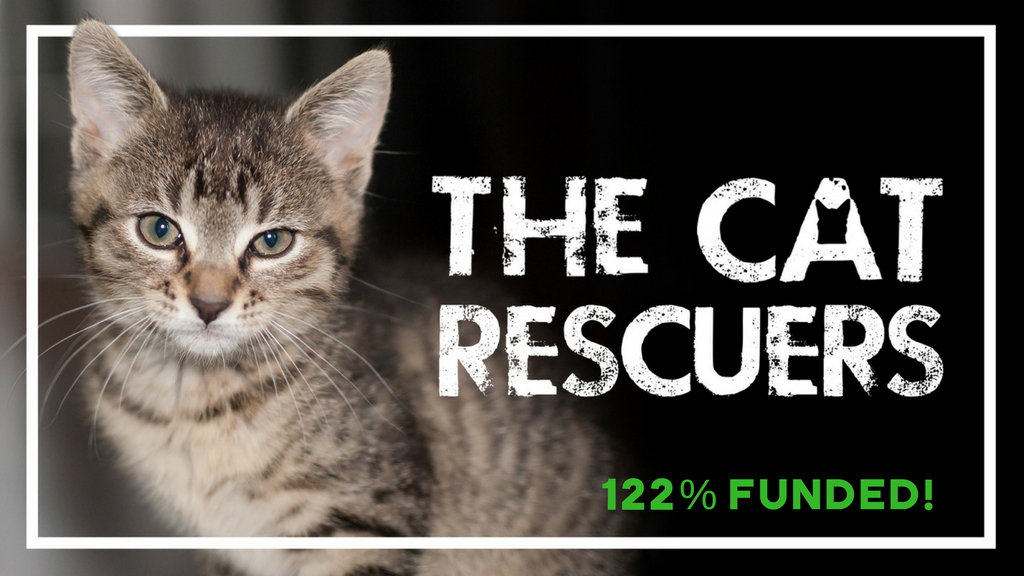 The Cat Rescuers Documentary project video thumbnail
