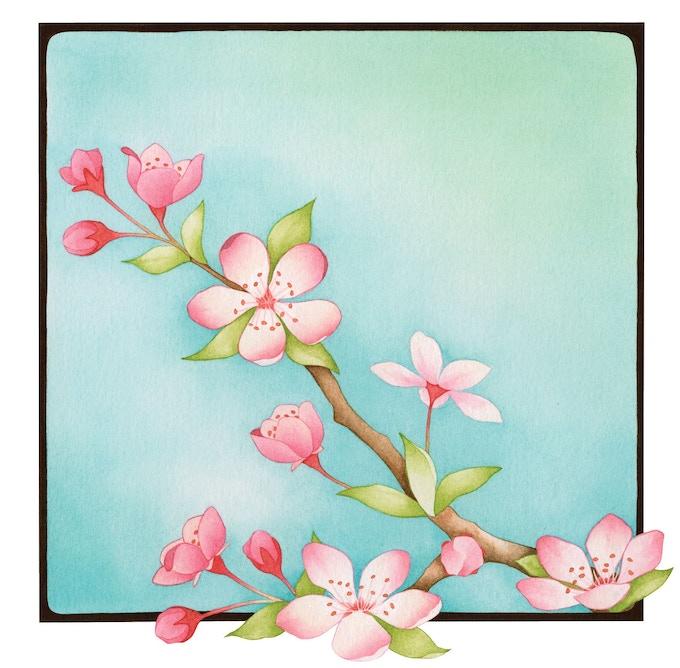 """Blossoms"" illustration"