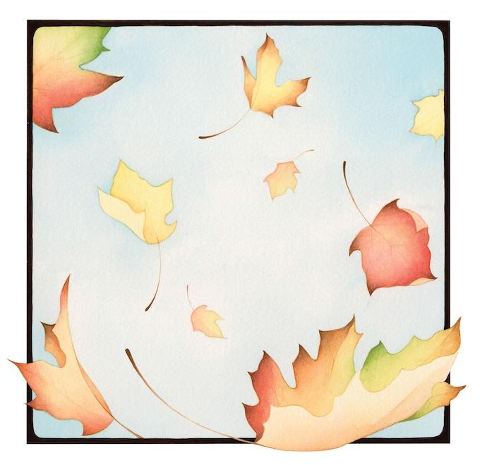 """""""Autumn Leaves"""" illustration"""