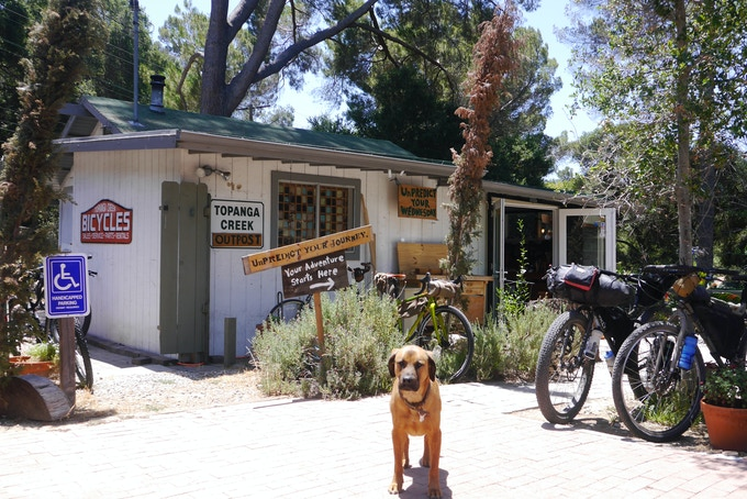 Our shop and Rover, the shop dog.