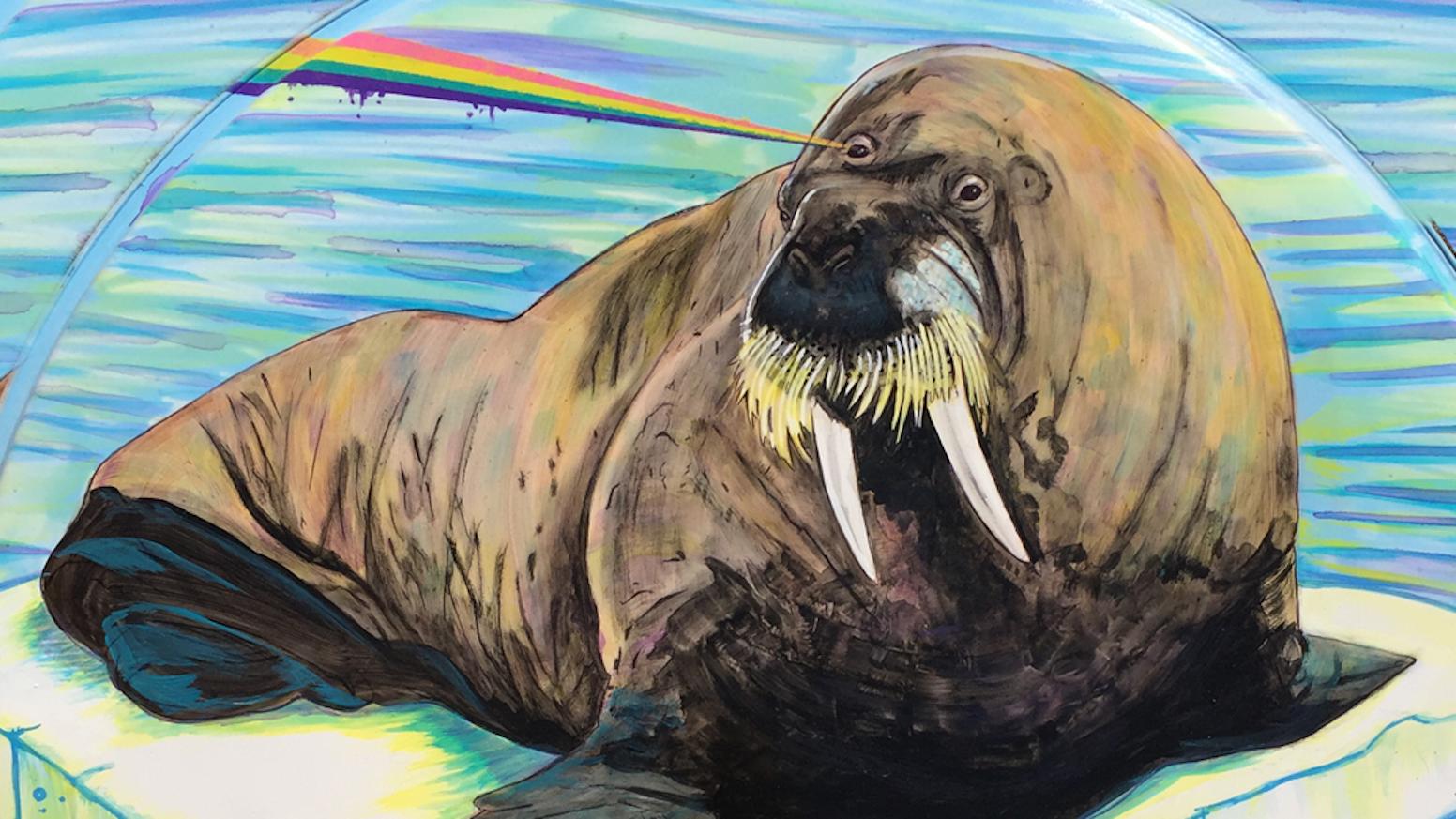 help fund our new record kickstart the walrus by burnt kickstarter