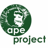 APE Project CIC