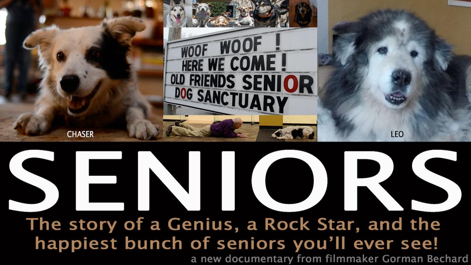 seniors a genius a rock star some very happy dogs by gorman bechard kickstarter. Black Bedroom Furniture Sets. Home Design Ideas
