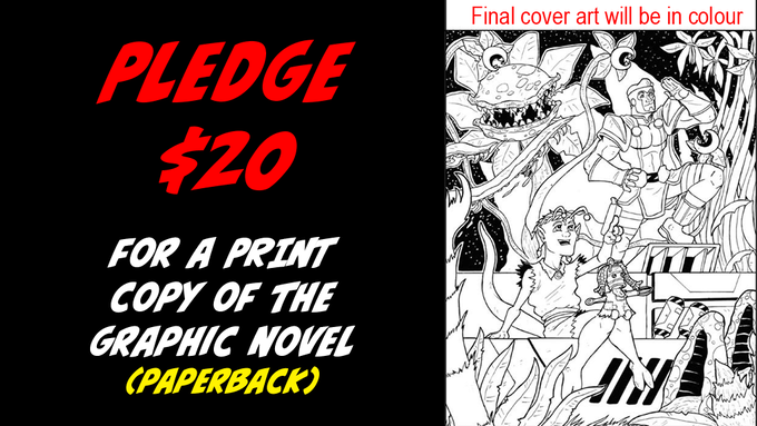 Pledge $20 for a print copy of the Graphic Novel.