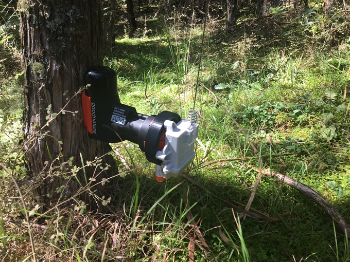 Trapping System - Goodnature A24 & Encounter Solutions node