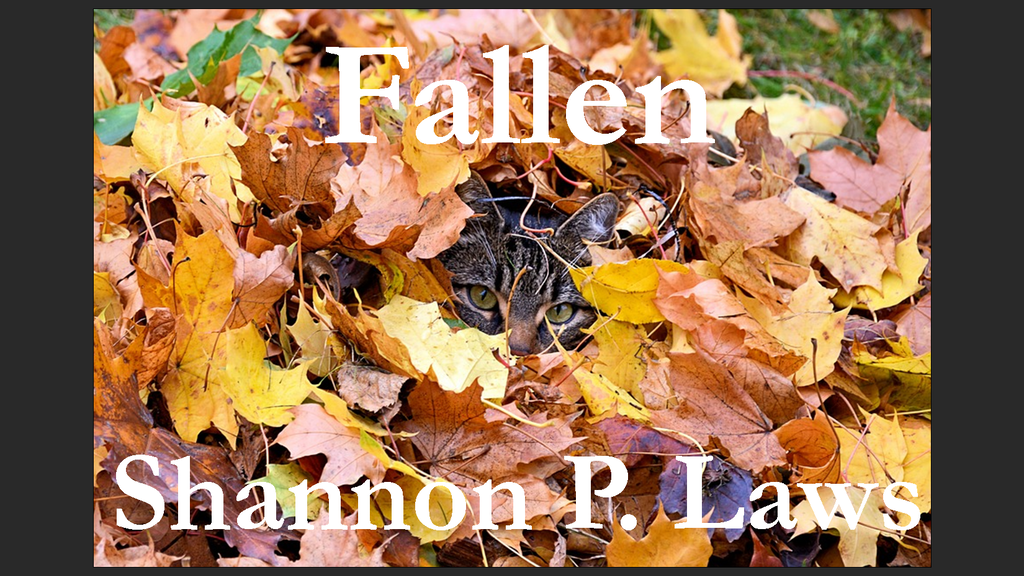 """Fallen"" Poetry Chap Book project video thumbnail"