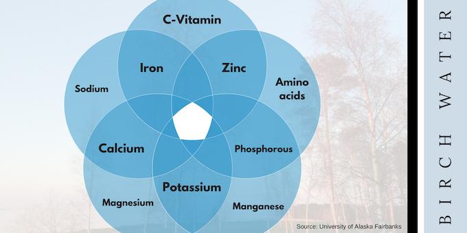 Micronutrients in Birch Water According to the University of Alaska Fairbanks