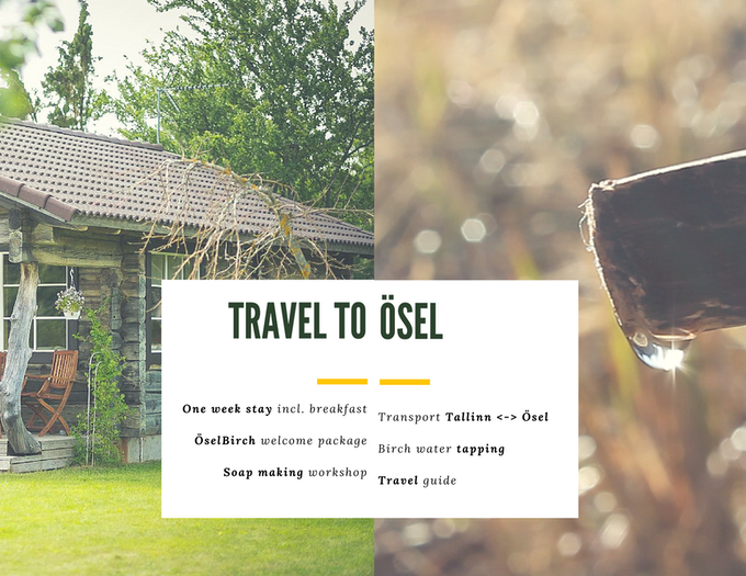Click on picture to read more about the beauty of Ösel!