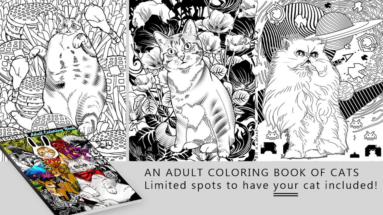 Eggsbff Cats Adult Coloring Book By Jimiyo Kickstarter