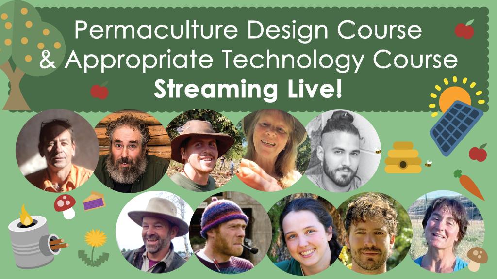 Live Stream Permaculture Design Course App Tech Course By Paul
