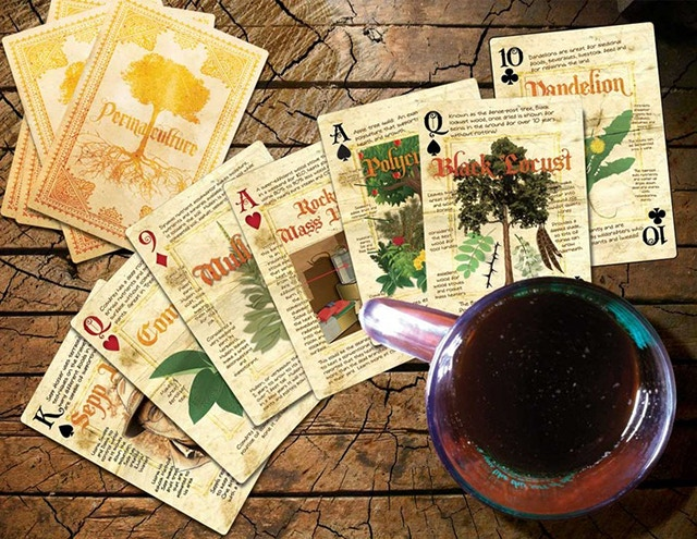Ebook of Permaculture Playing Cards