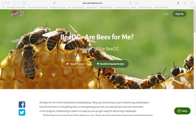 Are Bees For Me course