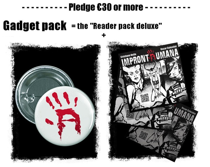 "The gadget pack includes pin and 2 stickers more than the ""reader pack deluxe"""