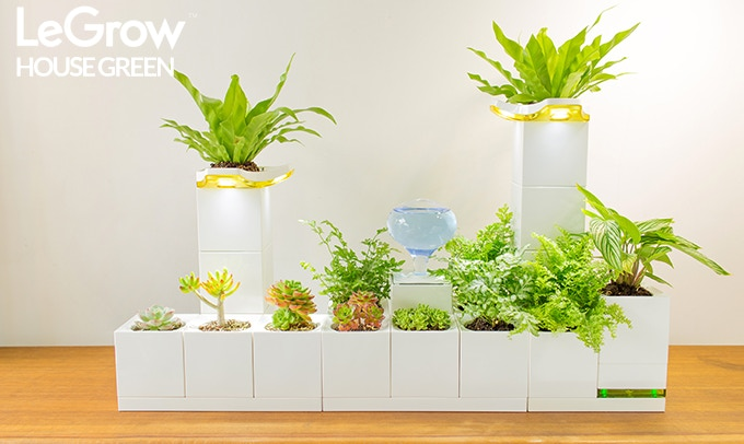 Legrow The Smart Indoor Garden For Any Space By Legrow